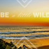 "|design| ""Be a little wild"" free download"