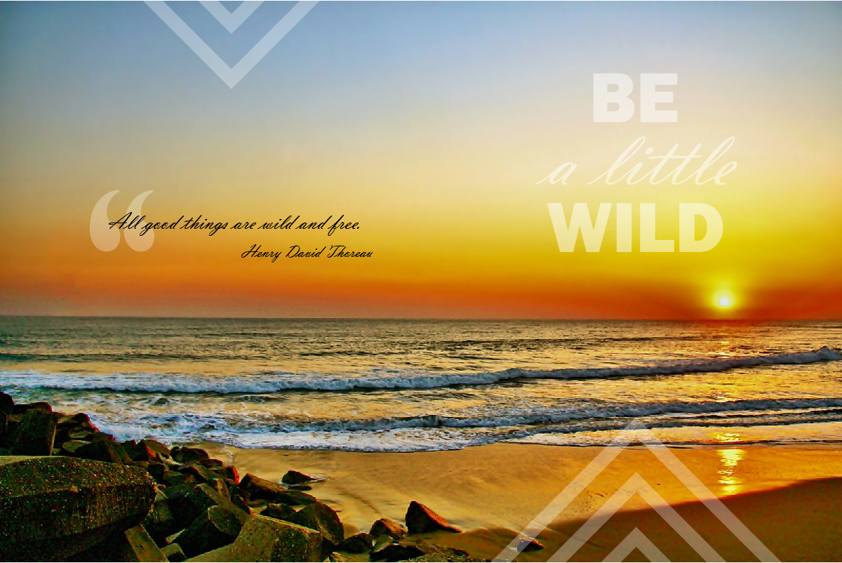 {PilotingPaperAirplanes.com} Own it, Be a little wild, Henry David Thoreau, sunrise, sunset